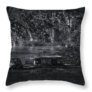 Sit And Ponder Throw Pillow