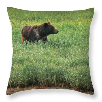 Sitka Grizzly Throw Pillow