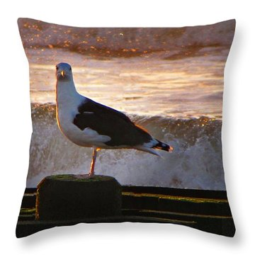 Sittin On The Dock Of The Bay Throw Pillow by David Dehner