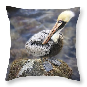 Sitting On A Rock In The Bay Throw Pillow