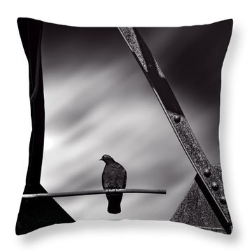 Sitting On A Stick Throw Pillow by Bob Orsillo