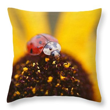 Sitting Pretty Throw Pillow by Darren Fisher