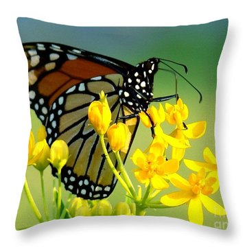 Sitting Pretty Throw Pillow by Leea Baltes