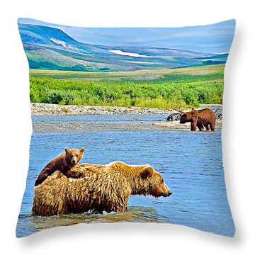 Six-month-old Cub Riding On Mom's Back To Cross Moraine River In Katmai National Preserve-alaska Throw Pillow