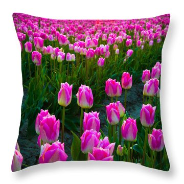 Skagit Valley Dawn Throw Pillow by Inge Johnsson