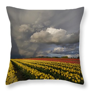 Skagit Valley Storm Throw Pillow by Mike Reid