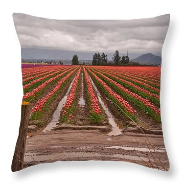 Skagit Valley Tulip Farmlands In Spring Storm Art Prints Throw Pillow by Valerie Garner