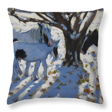 Skewbald Ponies In Winter Throw Pillow by Andrew Macara