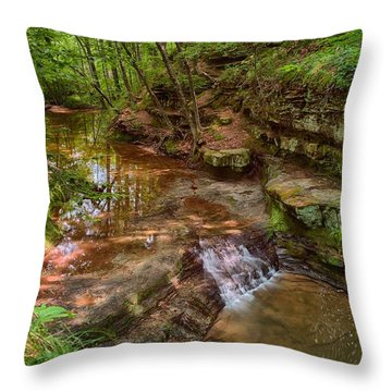 Skillet Creek Throw Pillow