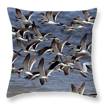 Skimmer Scadoodle Throw Pillow