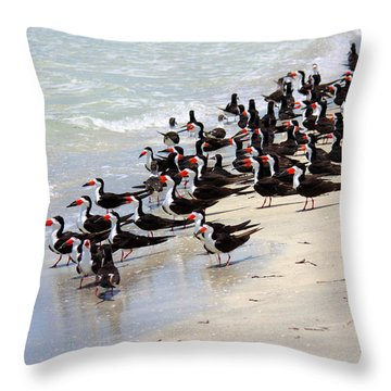 Skimmers On The Beach Throw Pillow by Carol Groenen