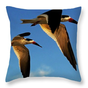 Skimmers Throw Pillow by Stuart Harrison