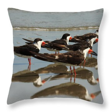Skimmers With Reflection Throw Pillow