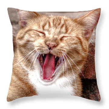 Skippy Laughing Throw Pillow