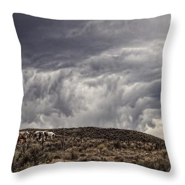 Skirting The Storm Throw Pillow