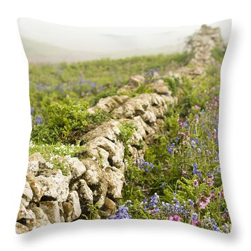 Skomer Wildflowers Throw Pillow by Anne Gilbert