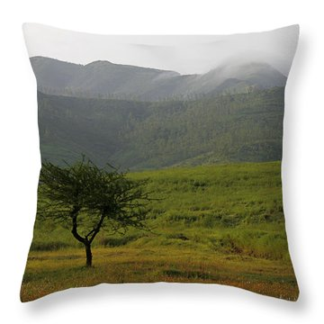 Throw Pillow featuring the photograph Skc 0053 A Solitary Tree by Sunil Kapadia