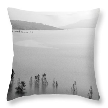 Throw Pillow featuring the photograph Skc 0055 A Hazy Riverscape by Sunil Kapadia