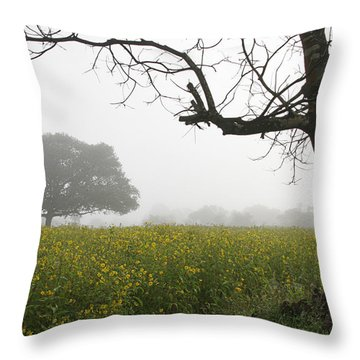 Throw Pillow featuring the photograph Skc 0060 Framed Tree by Sunil Kapadia