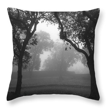 Throw Pillow featuring the photograph Skc 0063 Atmospheric Bliss by Sunil Kapadia
