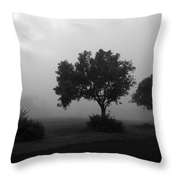 Throw Pillow featuring the photograph Skc 0074 A Family Of Trees by Sunil Kapadia