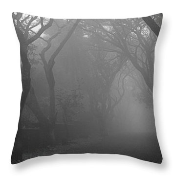 Throw Pillow featuring the photograph Skc 0077 A Romatic Path by Sunil Kapadia