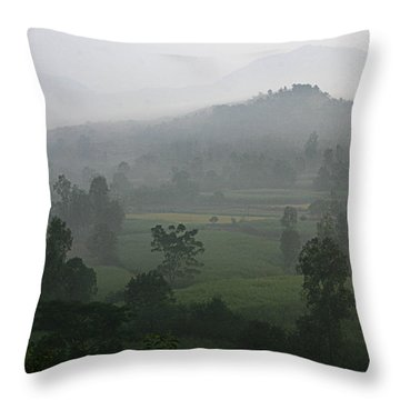 Skc 0079 A Winter Morning Throw Pillow by Sunil Kapadia