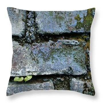 Throw Pillow featuring the photograph Skc 0301 Tiny Twin Leaves by Sunil Kapadia