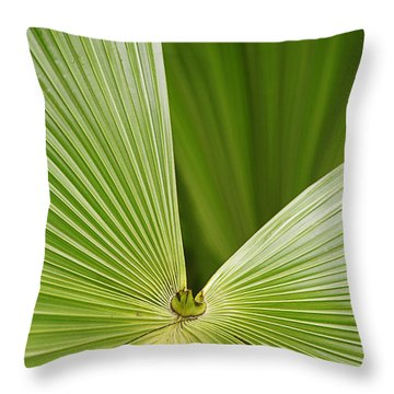Throw Pillow featuring the photograph Skc 0691 The Paths Of Palm Meeting At A Point by Sunil Kapadia