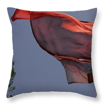 Throw Pillow featuring the photograph Skc 0958 The Flying Saree by Sunil Kapadia