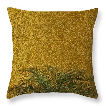 Throw Pillow featuring the photograph Skc 1243 Colour And Texture by Sunil Kapadia