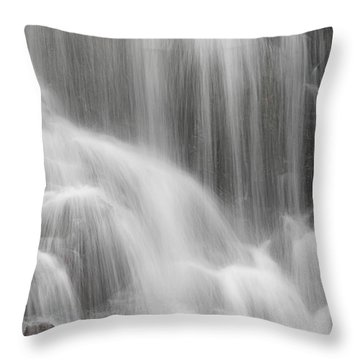 Throw Pillow featuring the photograph Skc 1419 A Smooth Pattern by Sunil Kapadia