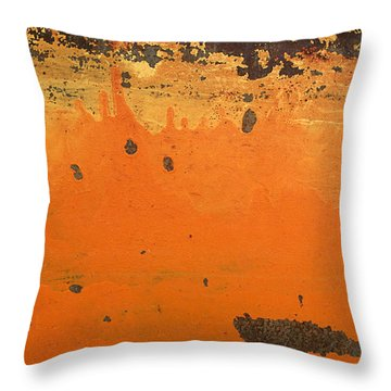 Throw Pillow featuring the photograph Skc 1505 Peeled Paint by Sunil Kapadia