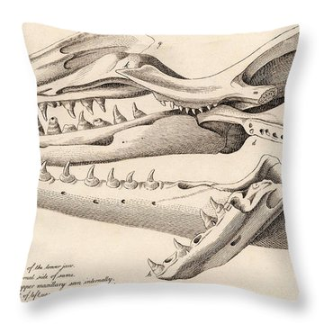 Maastricht Throw Pillows