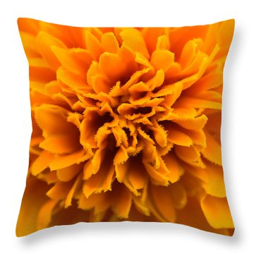 Skunk Flower Orange Throw Pillow