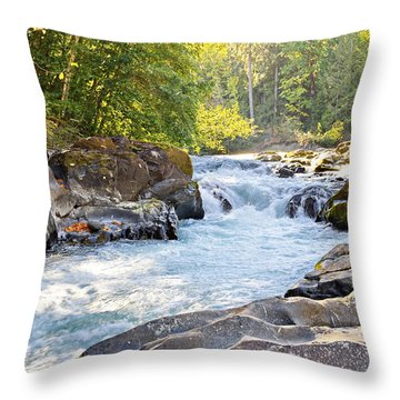 Skutz Falls At Cowichan River Provincial Park Throw Pillow