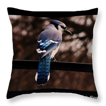 Sky Blue Wings Throw Pillow