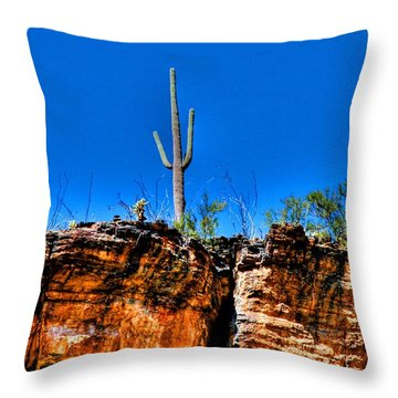Sky Island Throw Pillow