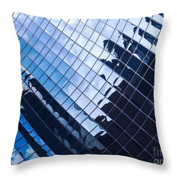 Reflections Throw Pillow by Ernest Puglisi