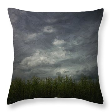 Sky With Cornfield Throw Pillow by Cynthia Lassiter