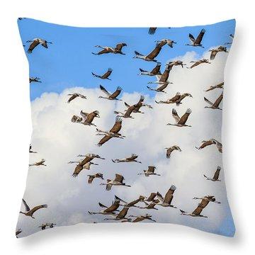 Skyful Of Cranes Throw Pillow