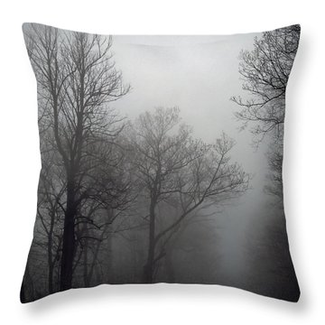 Skyline Drive In Fog Throw Pillow