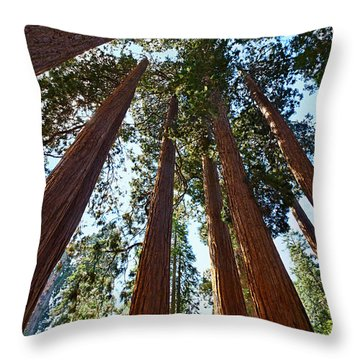 Skyscrapers - A Grove Of Giant Sequoia Trees In Sequoia National Park In California Throw Pillow