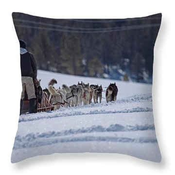Sled Dog  Throw Pillow