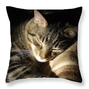 Sleeping Beauty Throw Pillow by Leslie Manley
