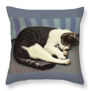 Sleeping Cat Throw Pillow by Blue Sky