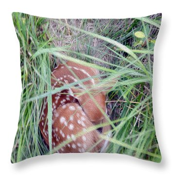 Sleeping Fawn 2 Throw Pillow