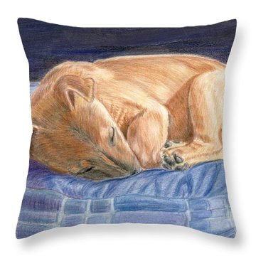 Sleeping Puppy Throw Pillow by Ruth Seal
