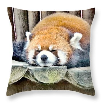 Sleeping Red Panda Bear Throw Pillow