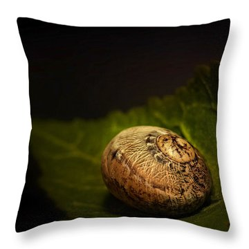 Sleeping Snail 01 Throw Pillow by Kevin Chippindall